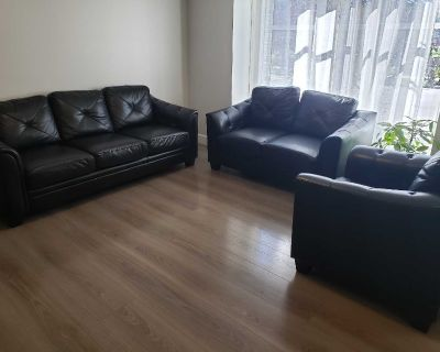 living room couches Set