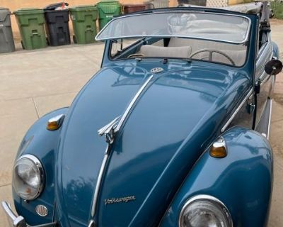 1966 VW Bug Convertible