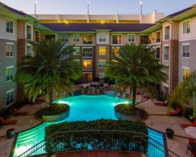 8333 Braesmain Dr Houston, TX 77054 3 Bedroom Apartment Rental