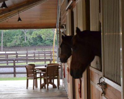 horse farm help