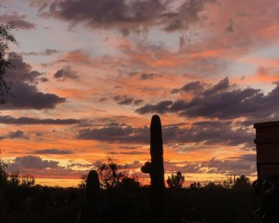 Quiet, Relaxing Townhouse by Oro Valley - La Cholla Hills