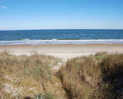 Rustic Beach Front Apartment - Cozy, Rustic and On the Beach! - 2 BR 1.5 Bath - Cottage Line