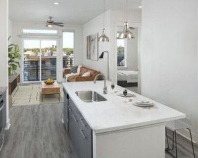 3213 Lawrence Street #101, Denver, CO 80205 1 Bedroom Apartment