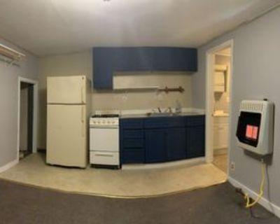 14 Mill Street #Lower Rear, Franklinville, NY 14737 1 Bedroom Apartment