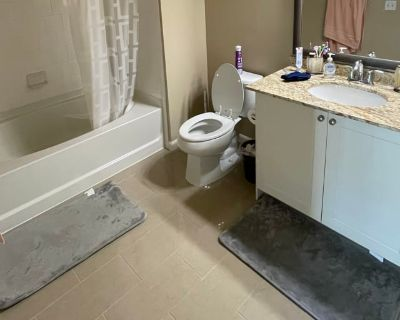 Private room with own bathroom - San Jose , CA 95134