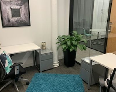 Private Office for 3 at Spaces North Loop