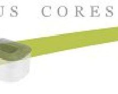 Buy Ferrite Cores online in USA | Dxtmagnetics.com