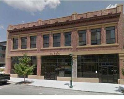 45 E Main St #204, Chattanooga, TN 37408 2 Bedroom Condo
