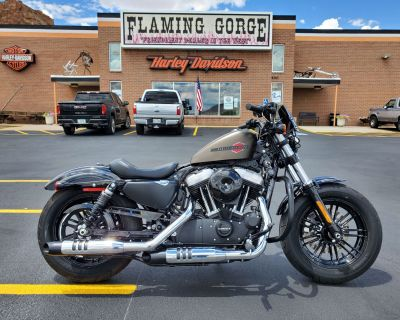 2020 Harley-Davidson Forty-Eight Sportster Green River, WY