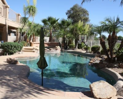 Oasis in the desert! Pool, hot tub, putting chipping green, outdoor bar. - Superstition Springs