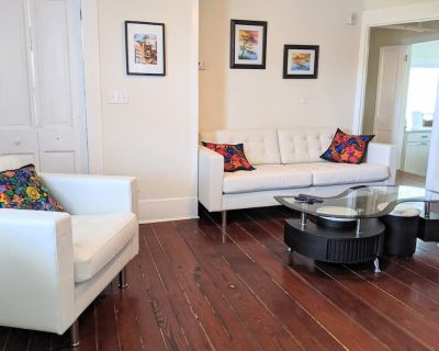 Sanitized pet-friendly apt two blocks from Historic District in an 1880's home! - Downtown Historic District