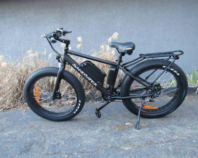 2020 SSR Motorsports Sand Viper 500W E-Bikes New Haven, CT