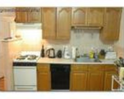 Boston - Brighton 1BA, One very large master bedroom with