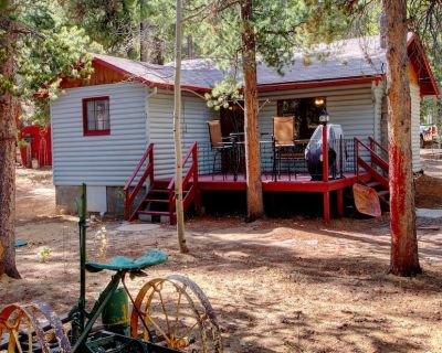 Cozy Vintage 1br Private Mountain Cabin for 2 - Gilpin County