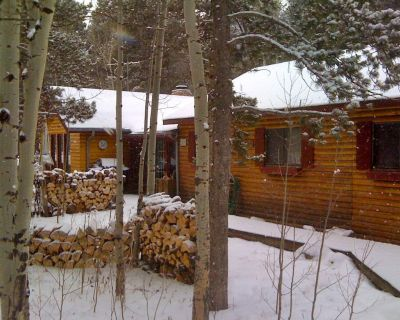 Charming log cabin for peaceful mountain getaway! - Gilpin County