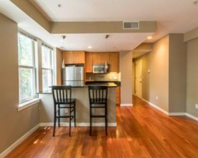 2535 13th St Nw #Unit 304, Washington, DC 20009 2 Bedroom House for Rent for $2,200/month