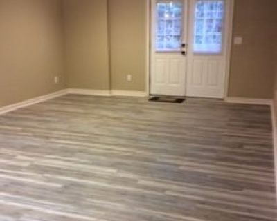 Recently renovated 2 BR 1 BA daylight basement apartment in Suwanee