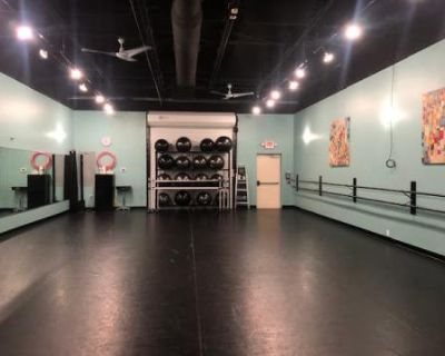 Bright 1,200 sq ft Studio w/ Large Mirrors, Orlando, FL
