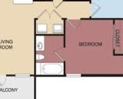 Private room with own bathroom - Riverside , CA 92507