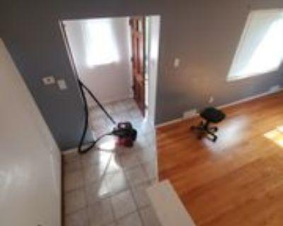 917 Saint Anne St #917A, Castle Shannon, PA 15234 3 Bedroom Apartment