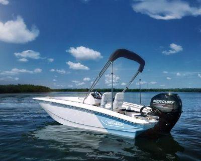 2022 Boston Whaler 13SPT