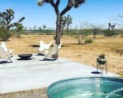 The Ocotillo Organic Modern Joshua Tree Retreat - Yucca Valley