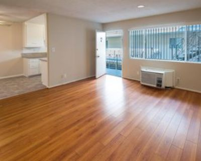 1042 Western Avenue #202, Glendale, CA 91201 1 Bedroom Apartment