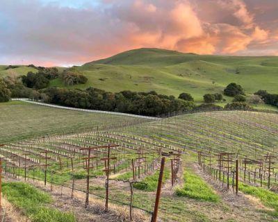 Mission Peak Ranch: Farm Stay - Sunol