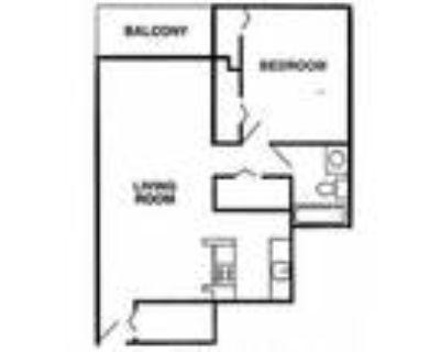 Cedar North - One Bedroom