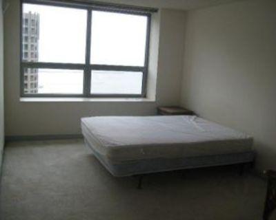 474 North Lake Shore Drive #2603, Chicago, IL 60611 1 Bedroom Condo