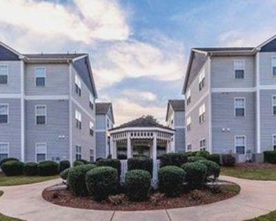 221 University Village Dr #A, Central, SC 29630 4 Bedroom Apartment