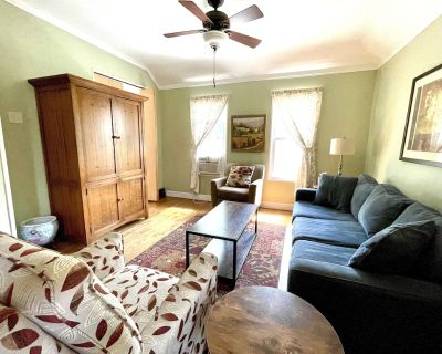 Beautiful 2-bedroom apt. on a quiet tree-lined rstreet close to downtown Chicago - Oak Park