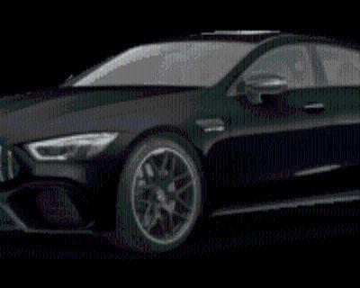 2019 Mercedes-Benz AMG GT AMG GT 63 S