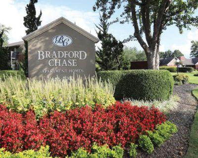 Bradford Chase