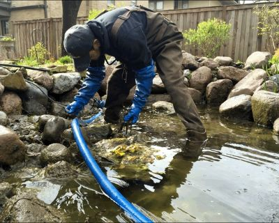HAPPY FROG KOI POND AND DECORATIVE FISH POND CLEANING