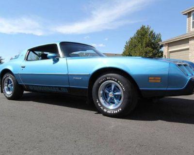 1980 Pontiac Firebird All-Steel Coupe Original Restored