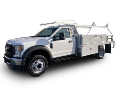2021 FORD F450 Cab and Chassis Trucks Medium Duty