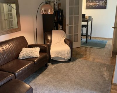 Sublet Needed for Roommate in a Great Apartment