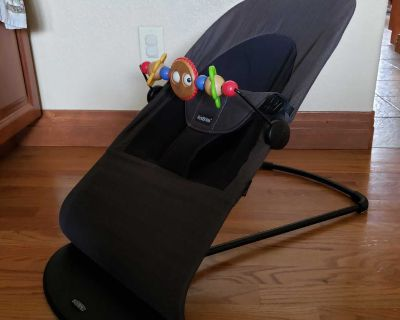 Baby Bjorn bouncer chair and wooden toy