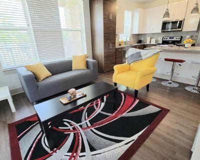 Entire 2 BR/2B Luxury Apartment - Duluth