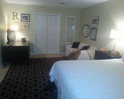 Spacious 2 Bedroom Private Suite - Atlanta - Sandy Springs