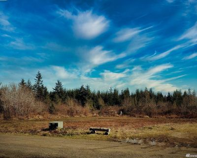 5.8+ Acres in Hoquiam WA - 61 Axford Prairie Lane