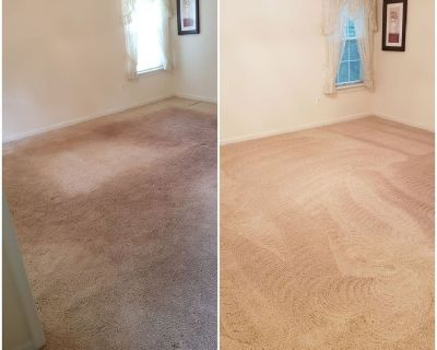 Hire The Best Eco-Friendly Carpet Cleaning in Alexandria