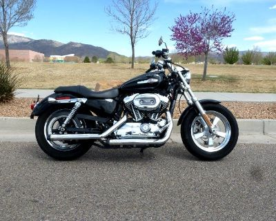 2014 Harley-Davidson XL1200C XL1200 SPORTSTER CUSTOM
