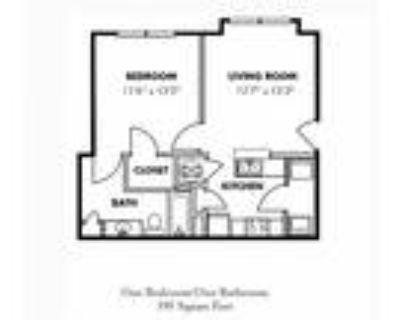 Carrington Park at Lake Lanier - 1 Bedroom/1 Bath Junior