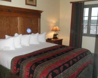 Rustic two bedroom lodge near Branson! - Big Cedars