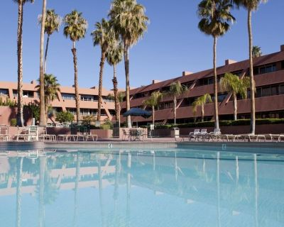Heart of Palm Springs! Spacious 1 BR Unit, Pool, Walk to Attractions, - Downtown Palm Springs