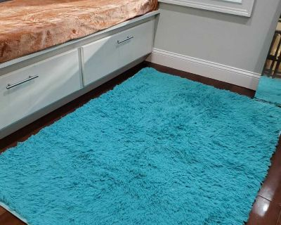 Pretty Turquoise Area Rug