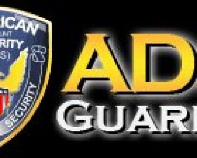 Get Expert Security for Sports Festivals or Concerts