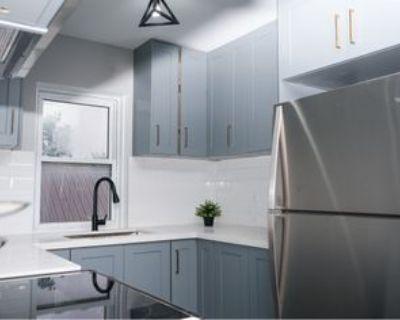 298 Egerton St #1, London, ON N5Z 2G7 2 Bedroom Apartment